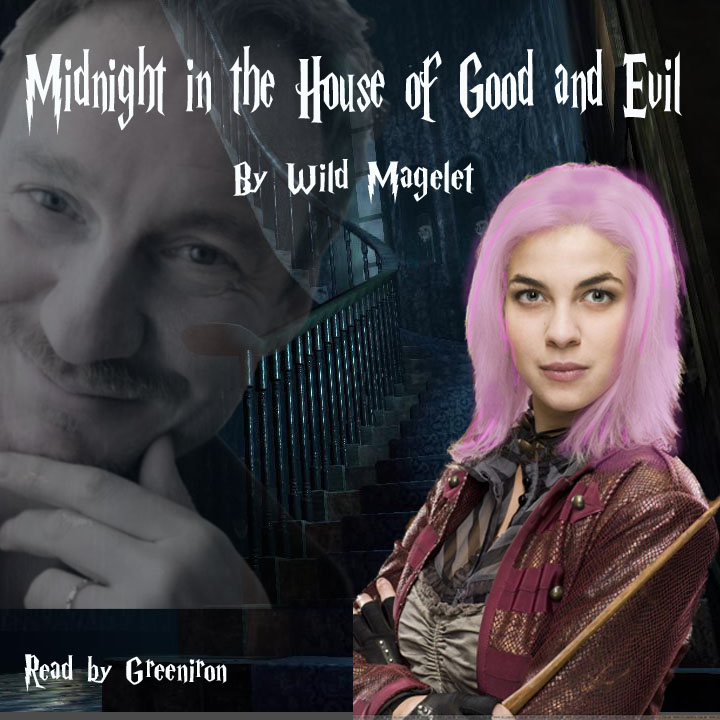Midnight in the House of Good and Evil Cover